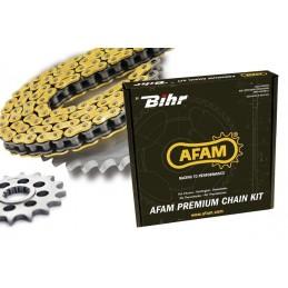 Kit chaîne AFAM 520 type...