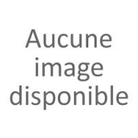 Fourchettes et barillet 350R